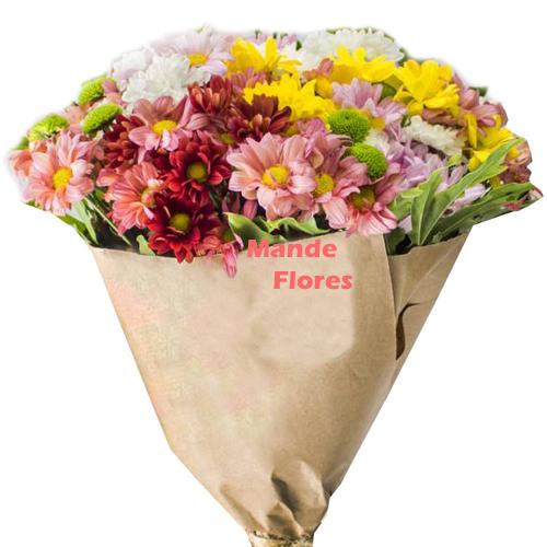4303 Flores do Campo.