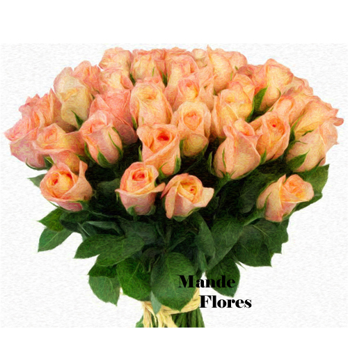4907 Buquê Com 36 Rosas Champanhe.