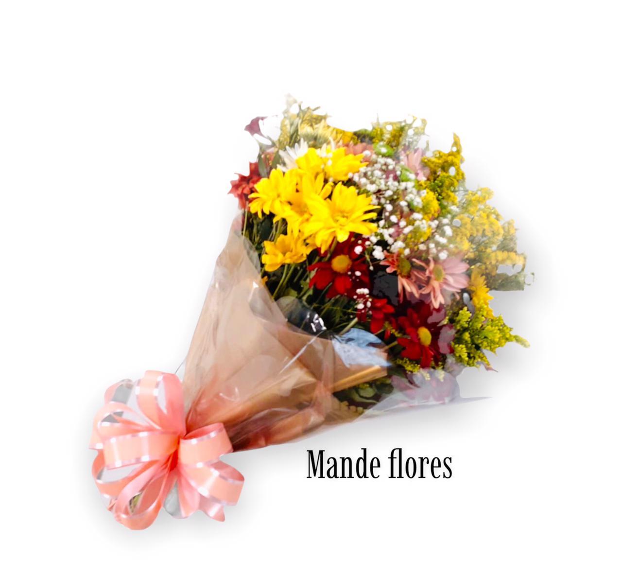 5559 Flores Do Campo Longo