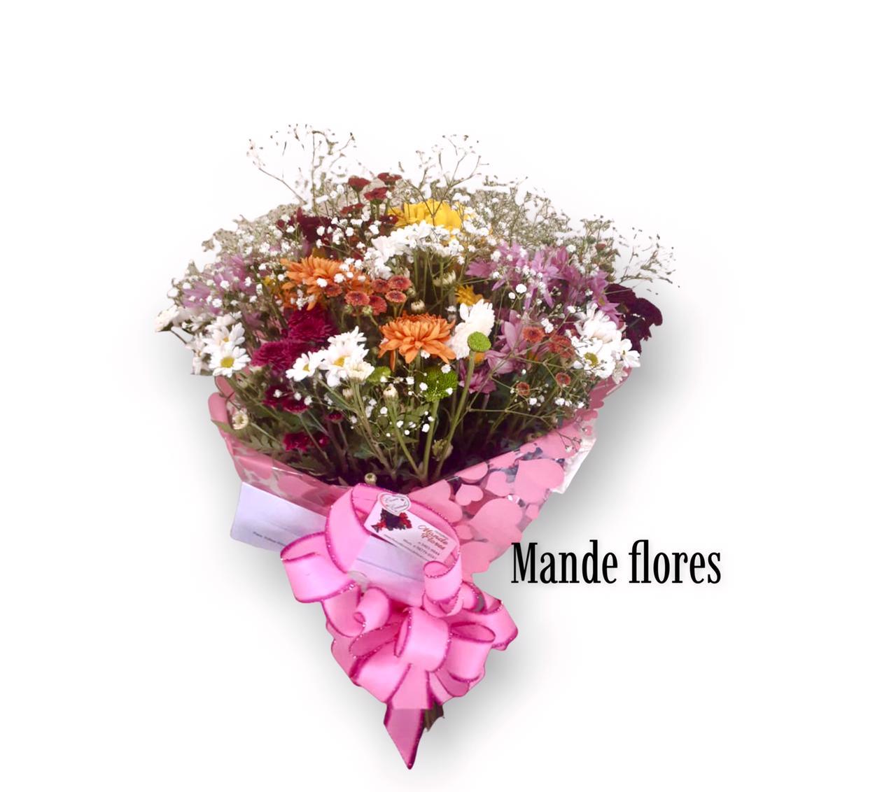 5561 Flores Do Campo Coloridas.